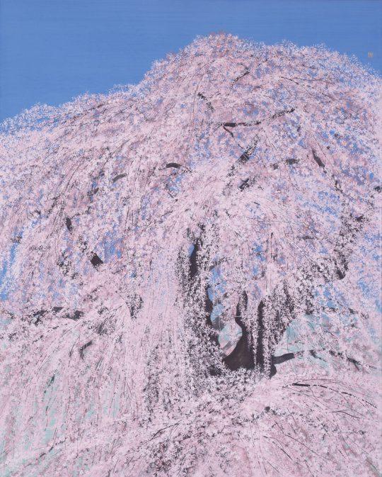 《三春の滝桜》 2013年 軽井沢千住博美術館所蔵